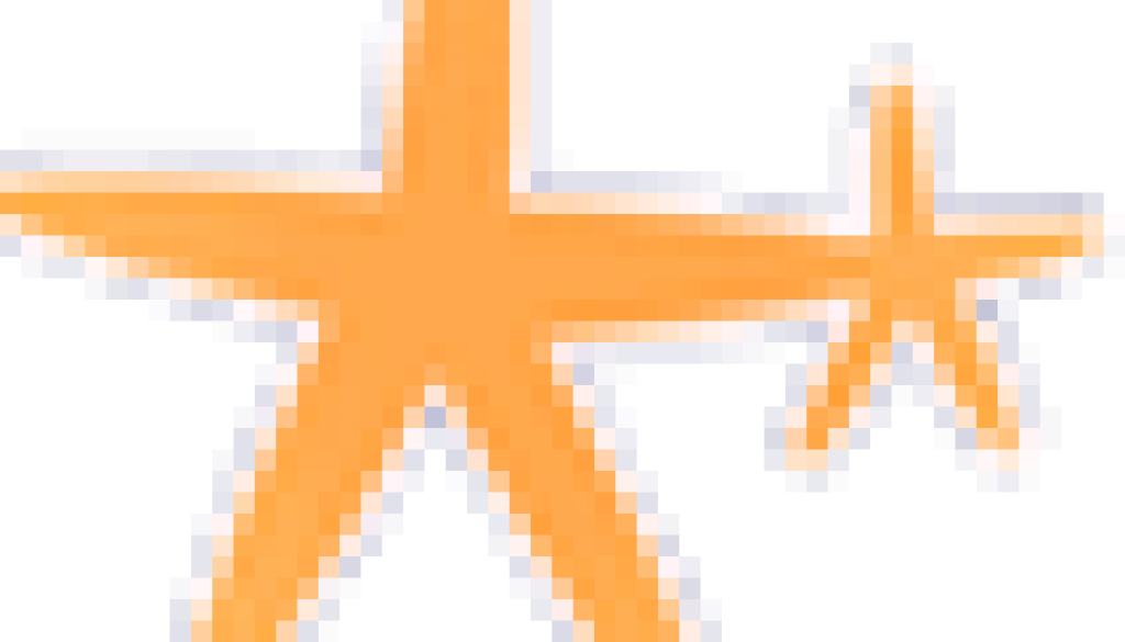 StarfishOZ Website Favicon